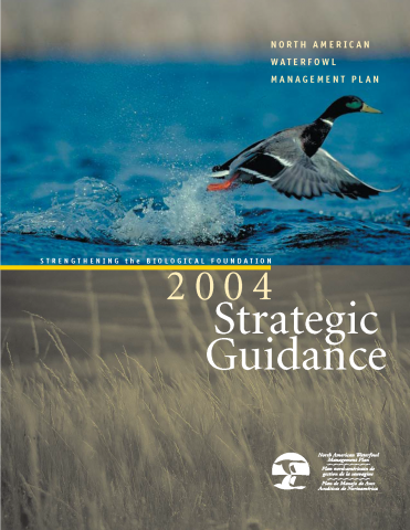 2004 Strategic Guidance