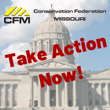 CFM Take Action Now