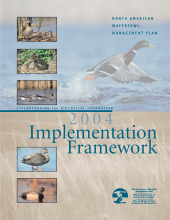 2004 Implementation Framework