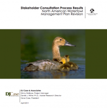 Stakeholder Input Cover